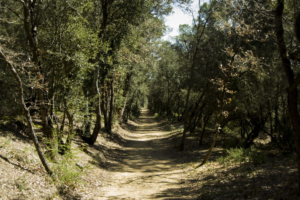 Caldes de malavella forest, Thermal Greenway