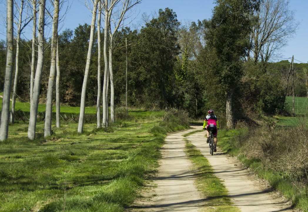 Cyclist on the Thermal Greenway
