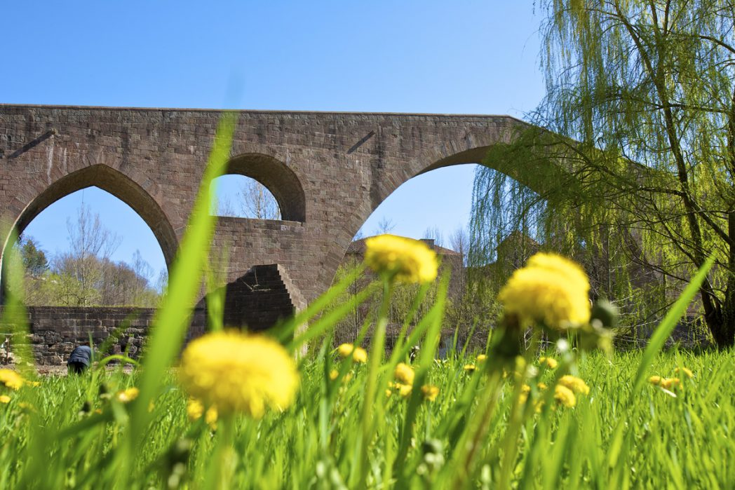 Bridge of Sant Joan de les Abadesses