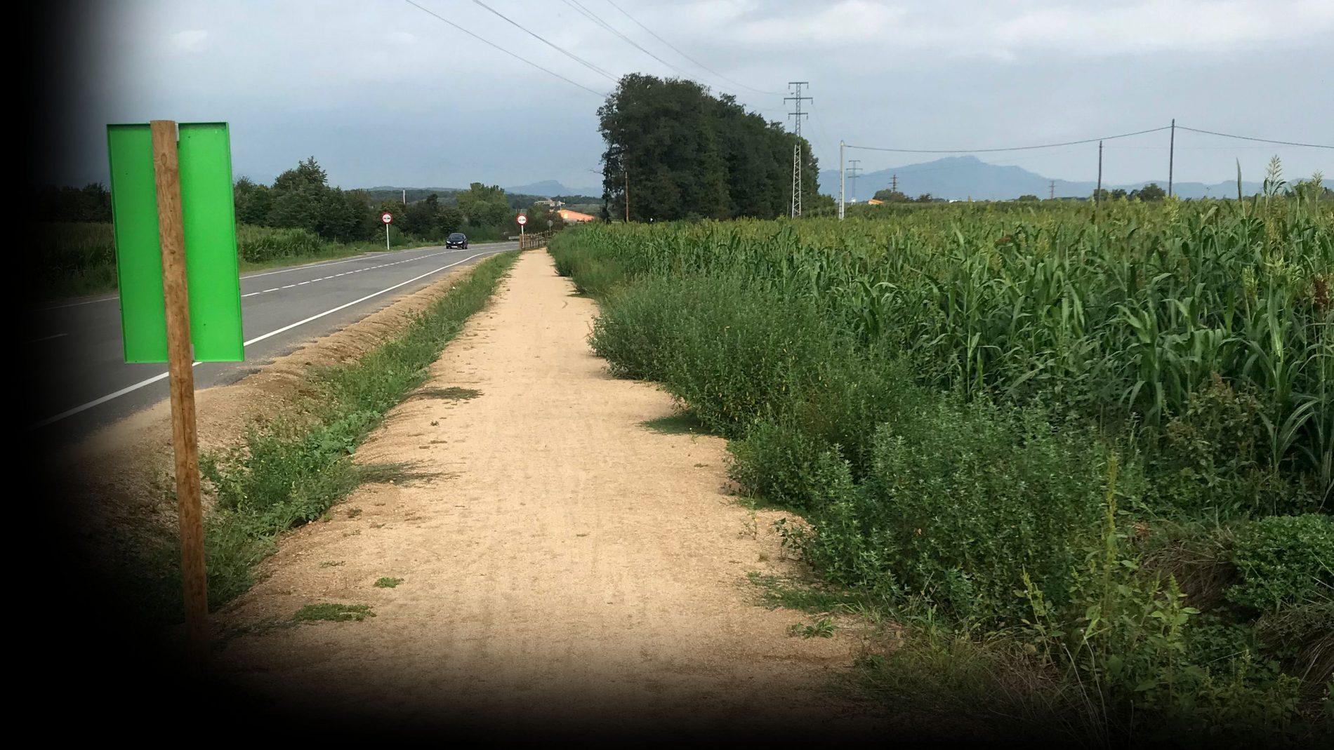 Vista de la via verda entre Fornells i Campllong, al costat de la carretera