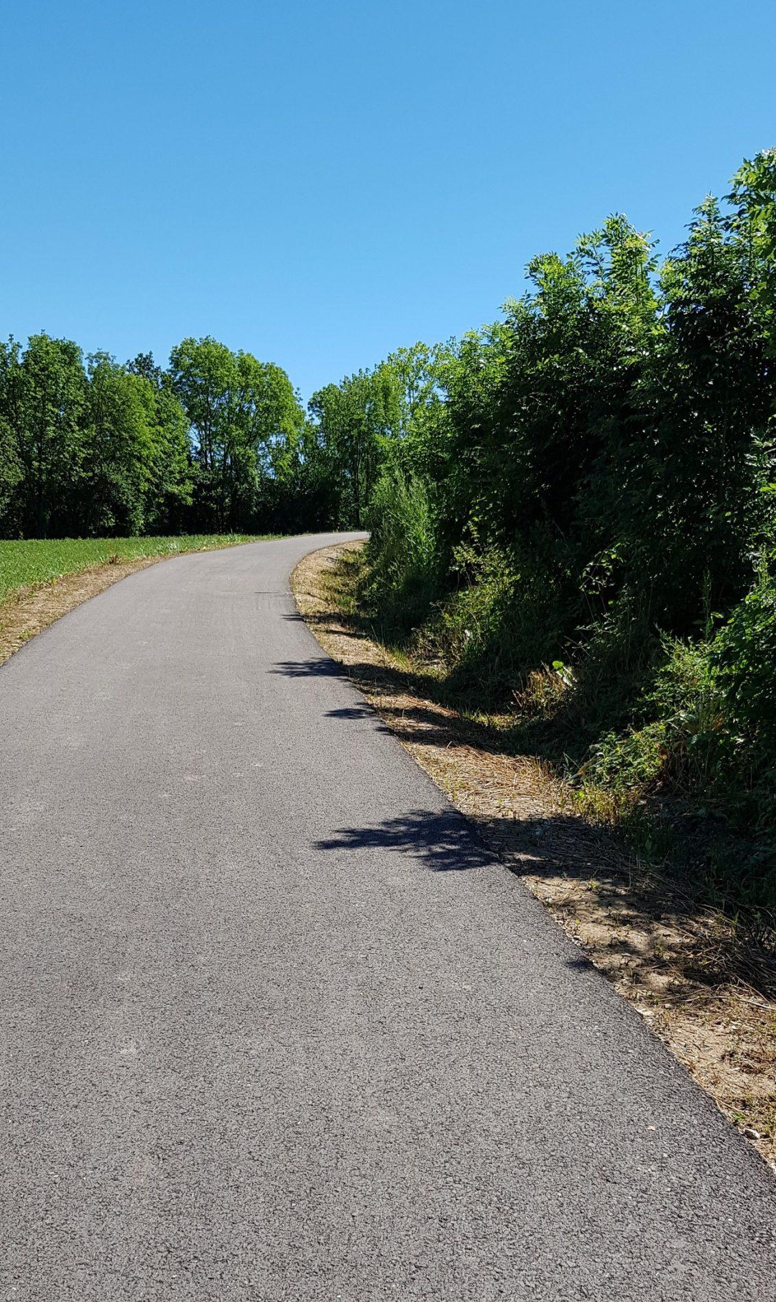 Tram de ruta de Sant Joan de les Abadesses a la Colònia Llaudet. Vista general i entorn verd.