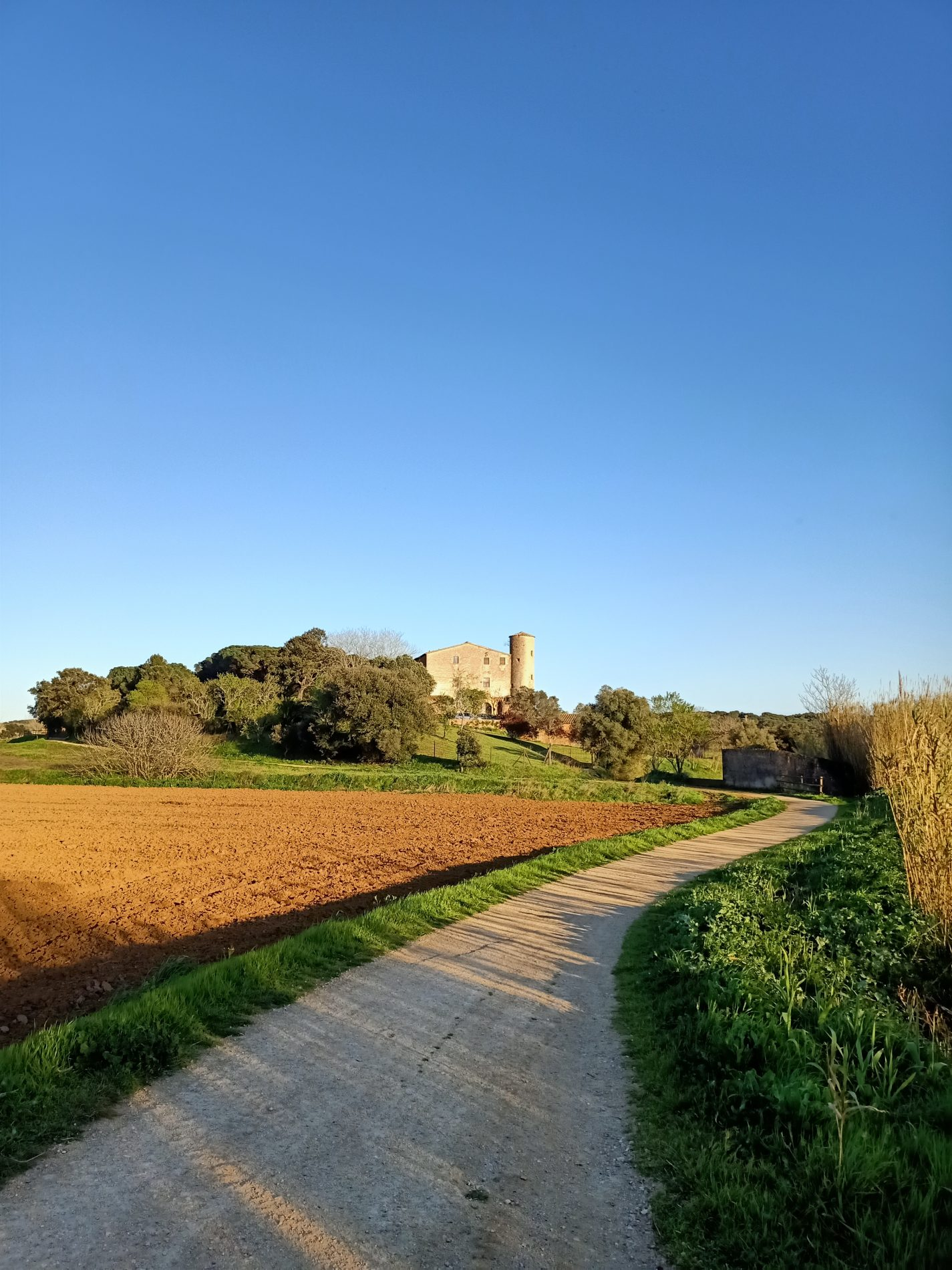 camí i Torre Roja